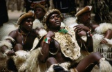 Zulu men, decorated in animal hides, performing a dance at a village in the Zululand region.